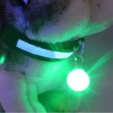 8750208-MyMei Hot Fascinating Pet Dog Cat Puppy LED Flashing Collar Safety Night Light Pendant  GREEN on JD