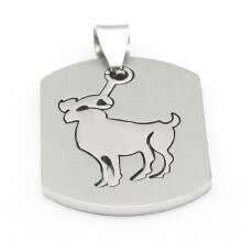-Hpolw Men's Stainless Steel Dog Tag Pendant Necklace charm jewelry pendants on JD